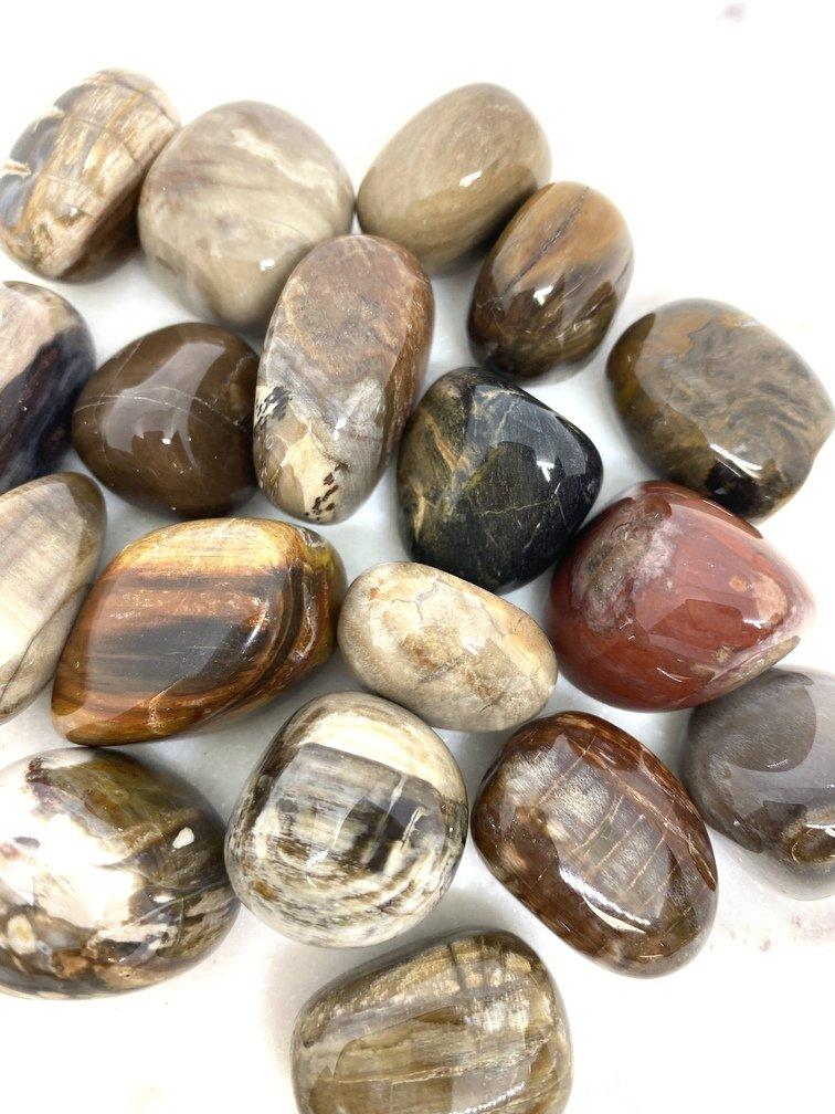 Petrified Wood Crystal Tumbled (each)